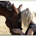 Equine Therapy Rescue Youth Parent Resources