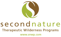 SNWP logo with website